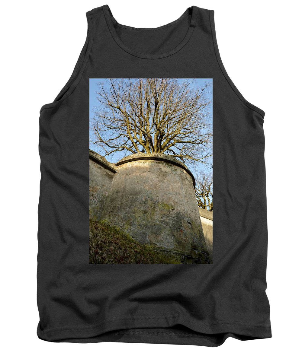 Nature Tank Top featuring the photograph Tree On The Wall by Felicia Tica