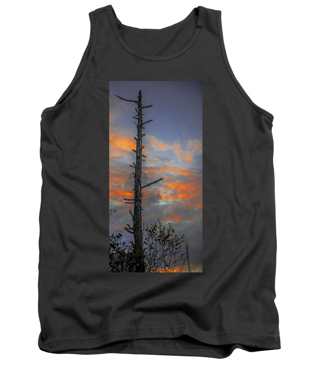 Unset Tank Top featuring the photograph Tree Silhouette by Paul Freidlund
