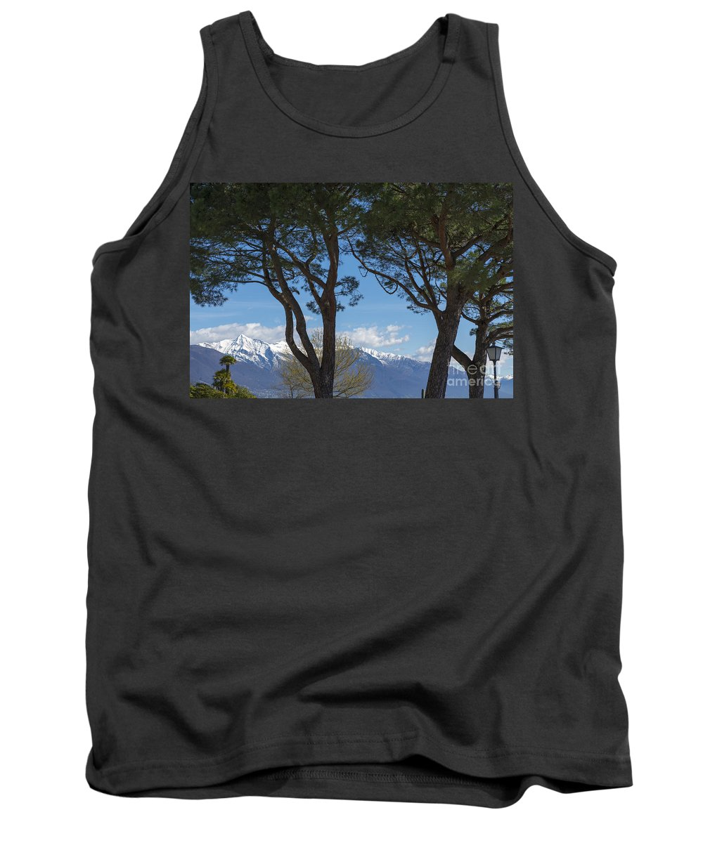 Trees Tank Top featuring the photograph Trees And Snow-capped Mountain by Mats Silvan
