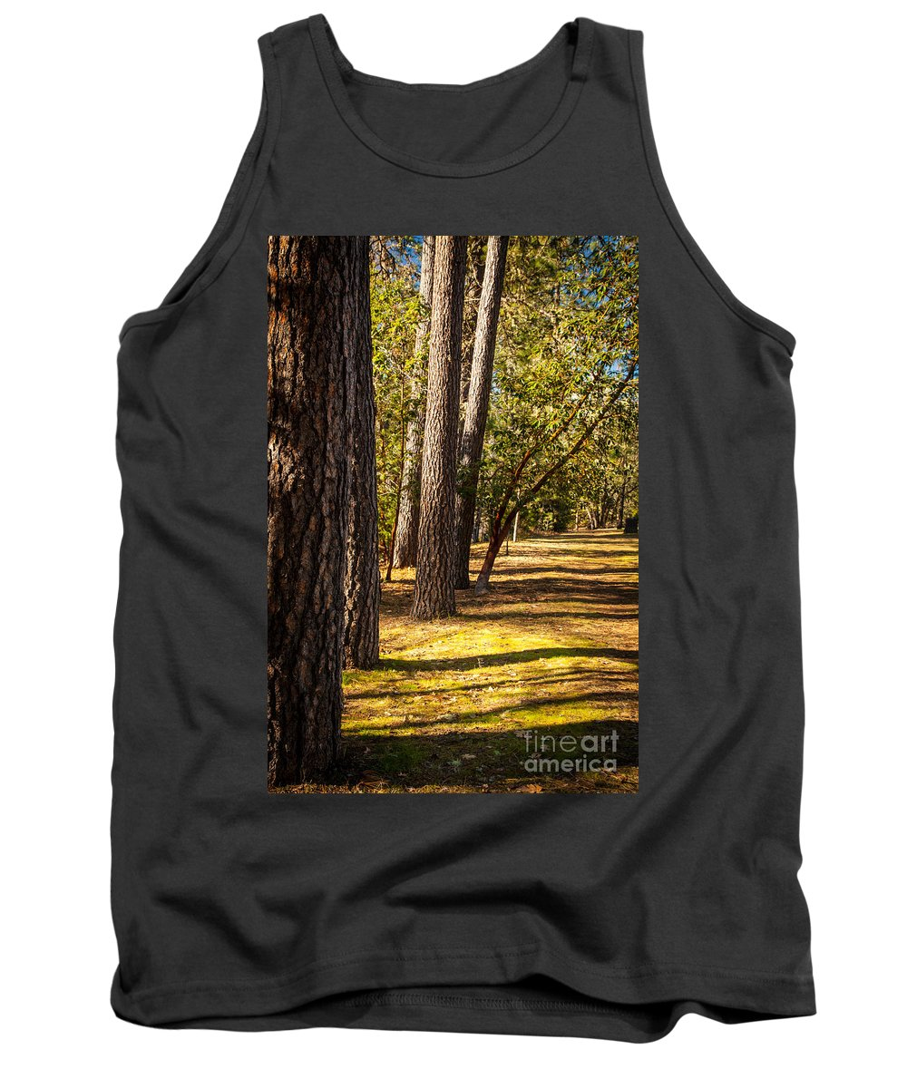 Applegate River Tank Top featuring the photograph Trees In A Park by James Adams