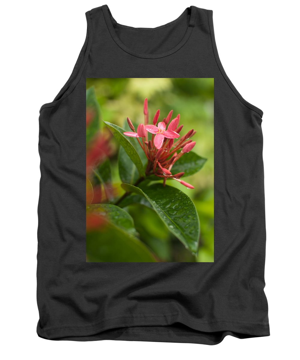 Ornaments Tank Top featuring the photograph Tropical Flowers In Singapore by Miguel Winterpacht