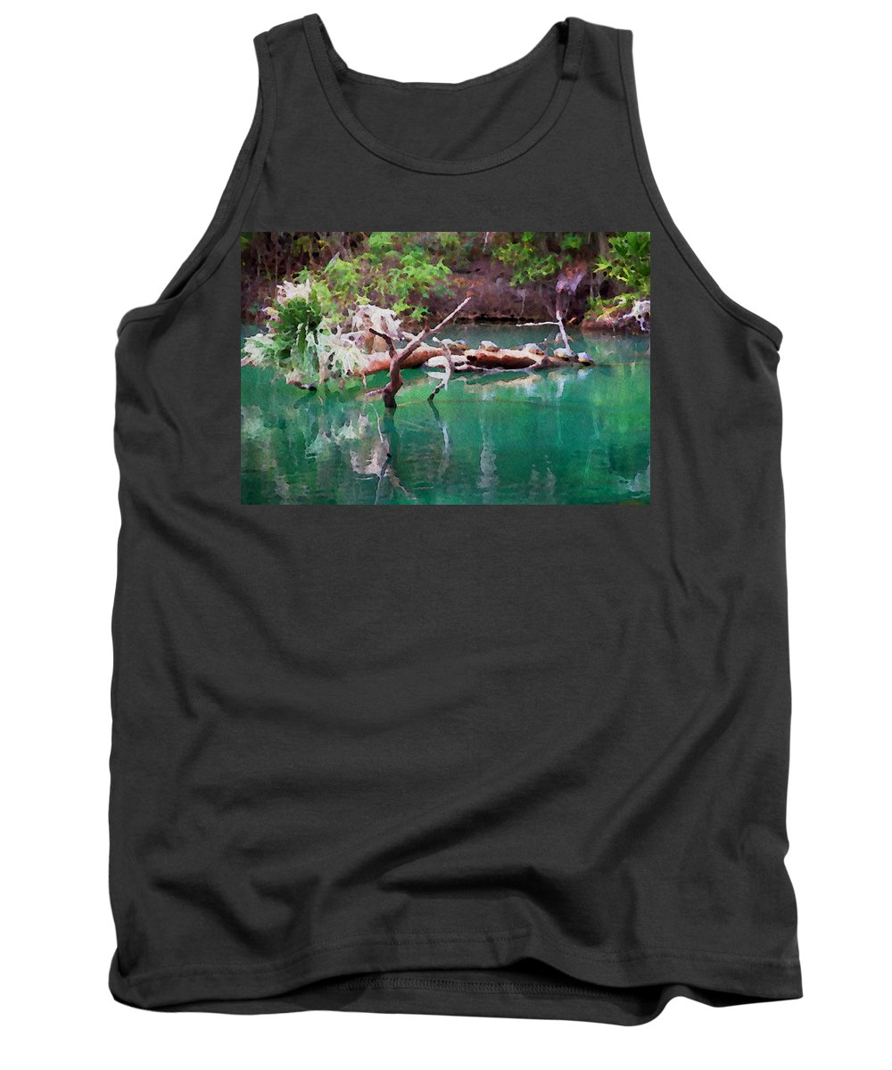 Turtle Florida Scenic Water Spring Natural Tank Top featuring the photograph Turtle Retreat by Alice Gipson