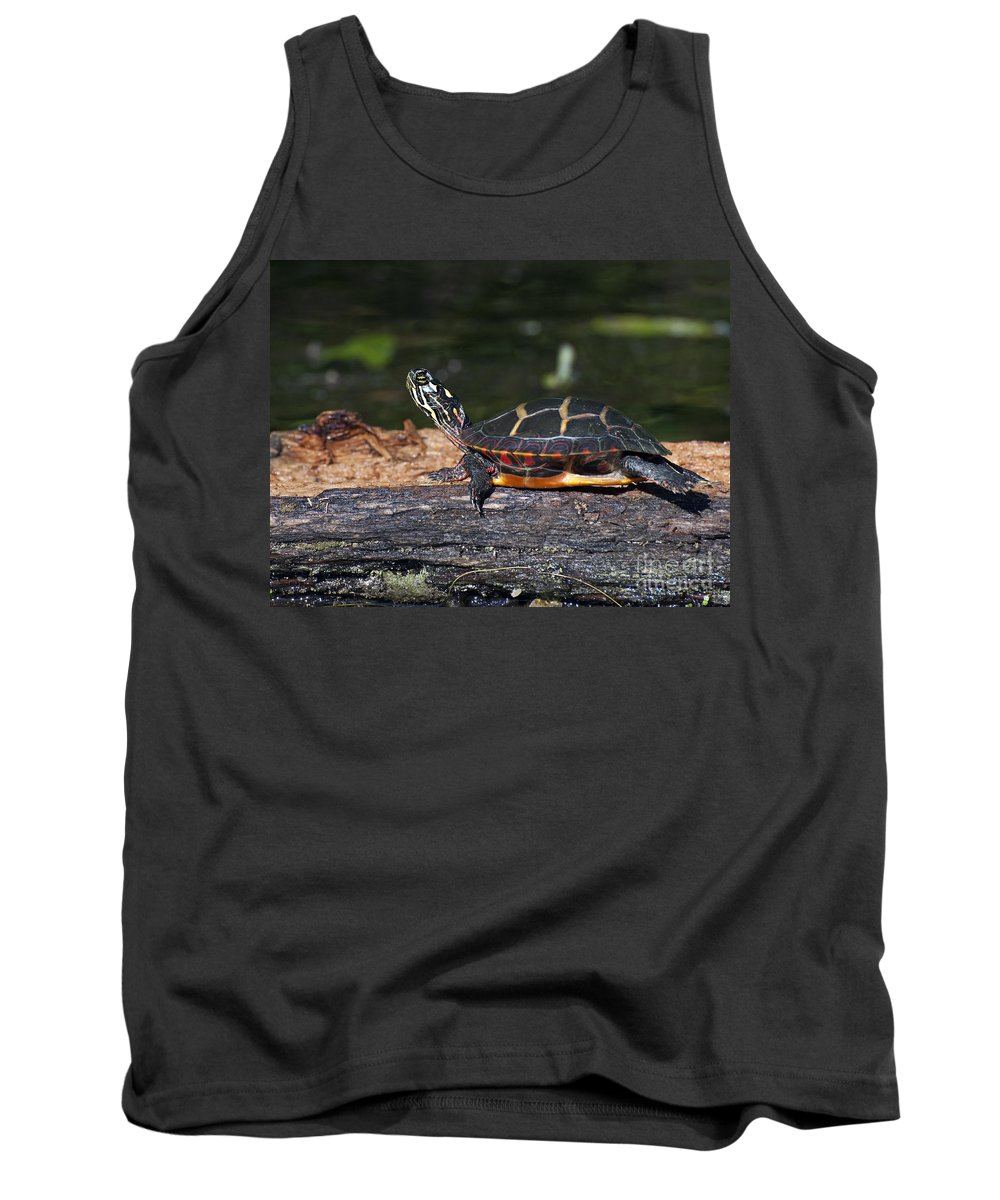 Log Tank Top featuring the photograph Turtle Sun Bathing by Glenn Gordon
