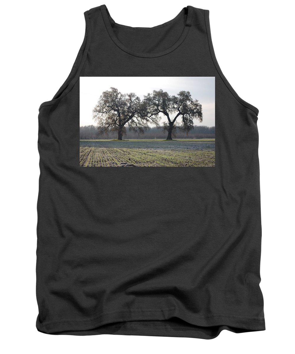 Two Tree Trees Frosty Field Morning Vineyard Vina Ca Tank Top featuring the photograph Two Tree Frosty Morning by Holly Blunkall