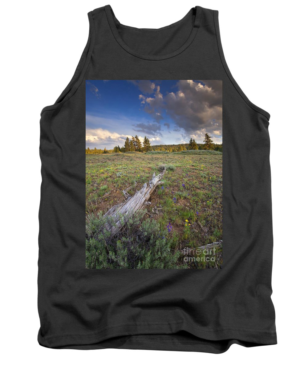 Meadow. Rocky Tank Top featuring the photograph Under Stormy Skies by Mike Dawson