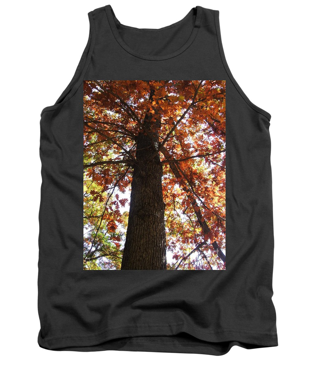 Tree Tank Top featuring the photograph Up Fall by Minding My Visions by Adri and Ray
