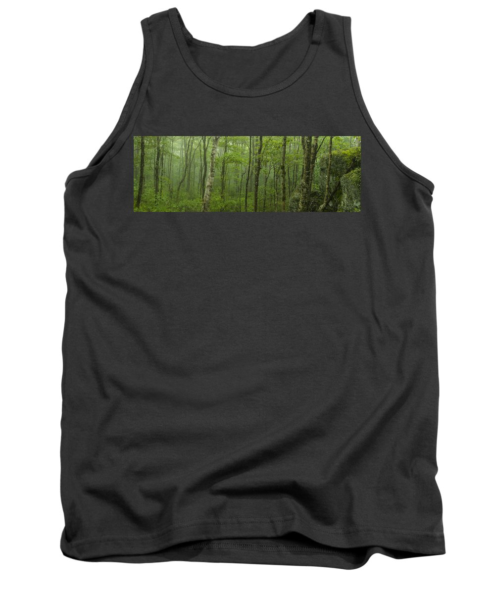 Vermont Tank Top featuring the photograph Vermont Mount Mansfield Green Forest Fog Panorama by Andy Gimino
