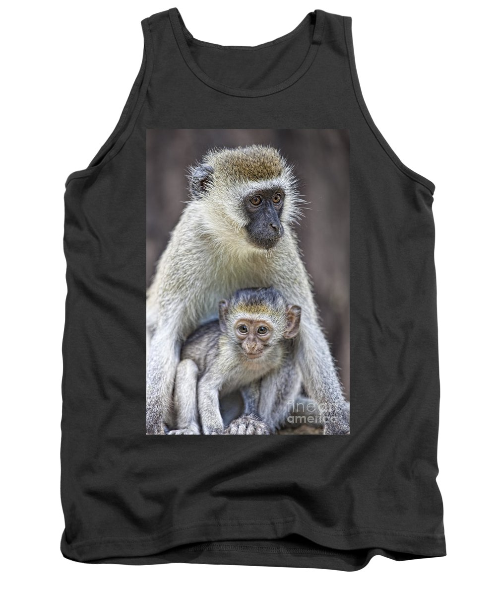 Africa Tank Top featuring the photograph Vervet Monkeys by Timothy Hacker