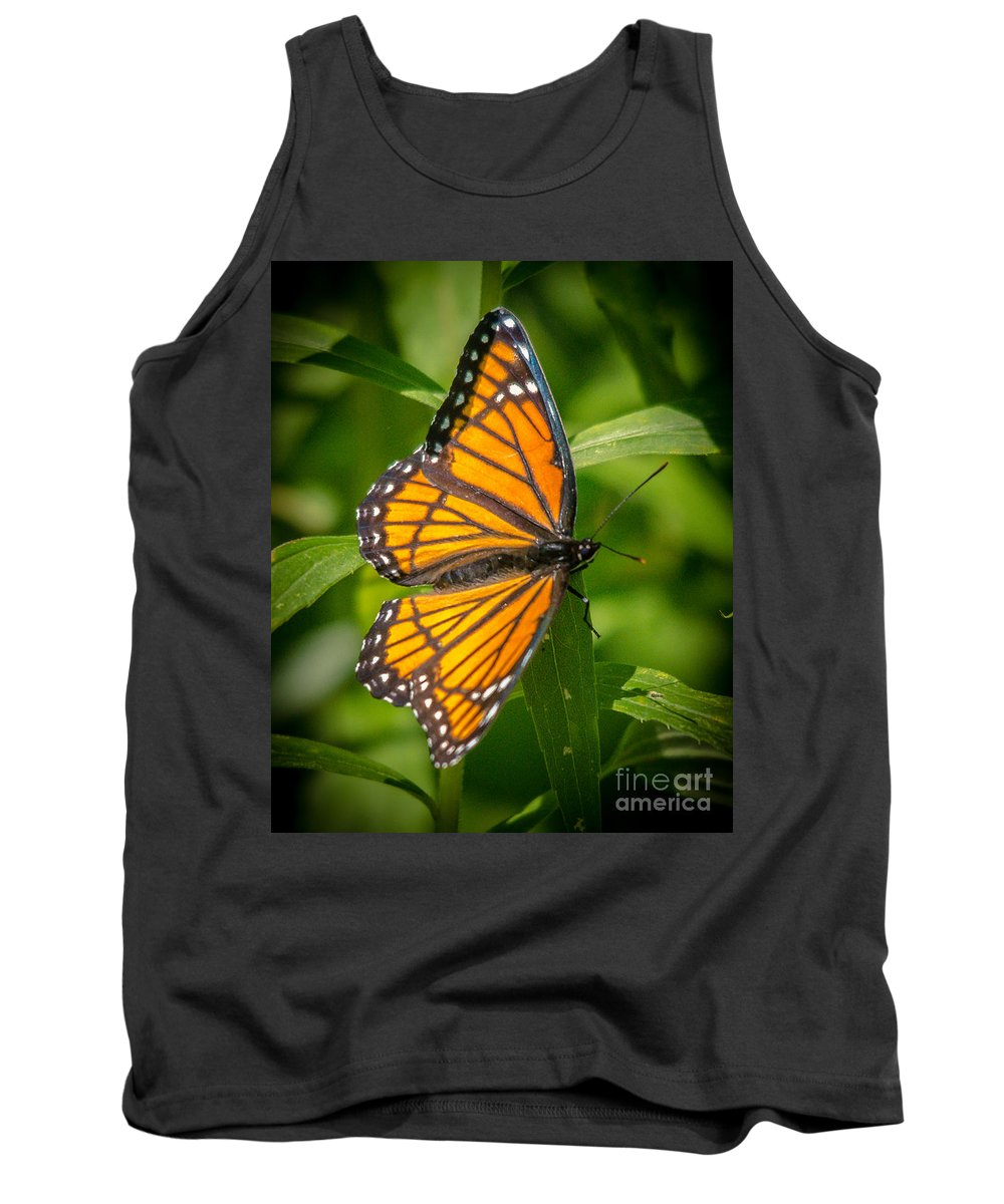 Viceroy Butterfly Tank Top featuring the photograph Viceroy by Cheryl Baxter