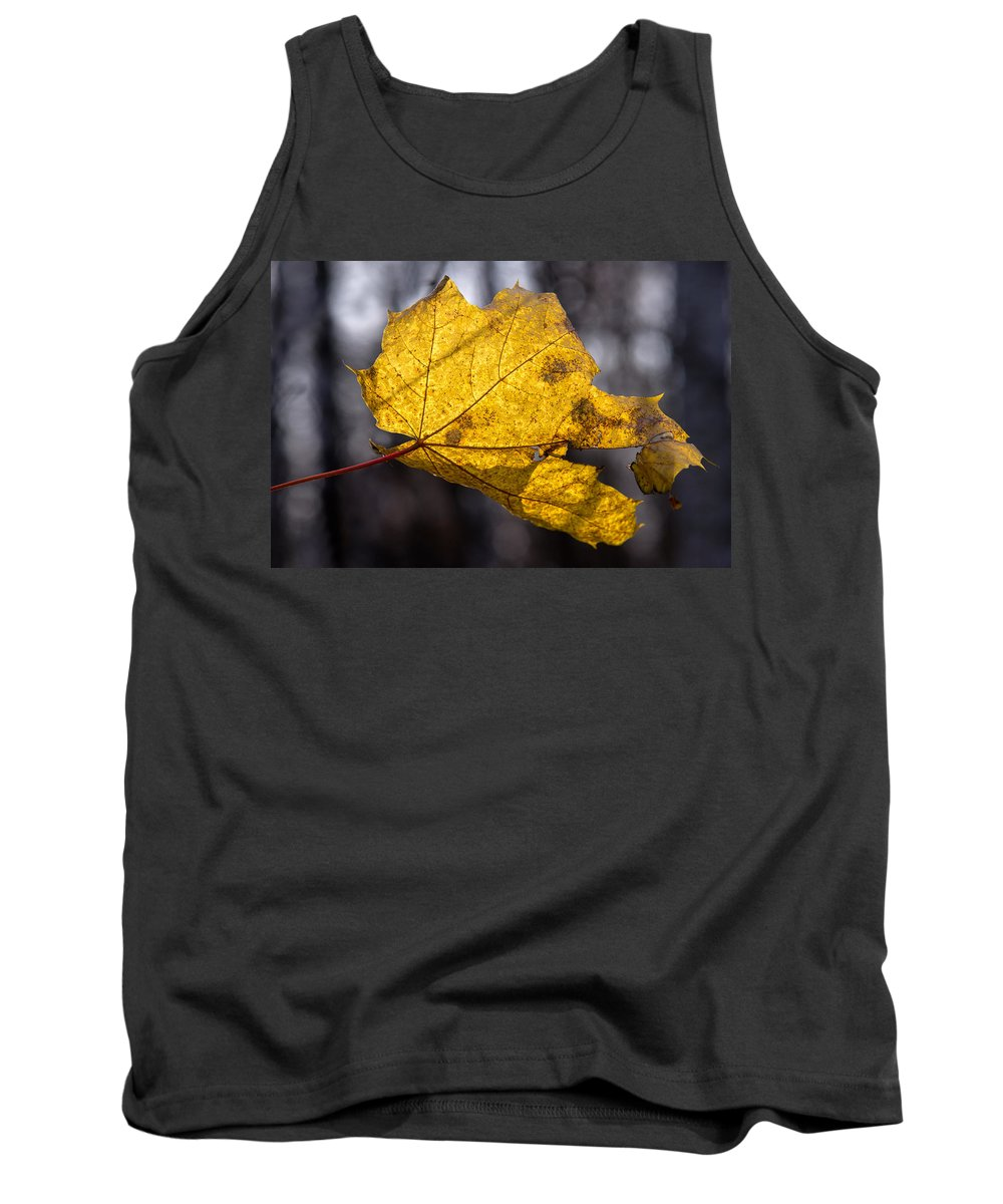 Abstract Tank Top featuring the photograph Virgin Gold - Featured 3 by Alexander Senin