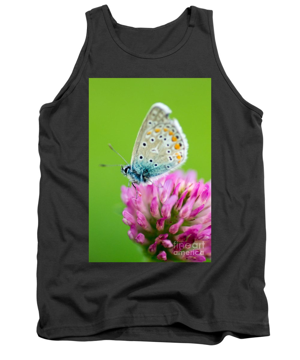 Butterfly Tank Top featuring the photograph Waiting For The Sun by Brothers Beerens
