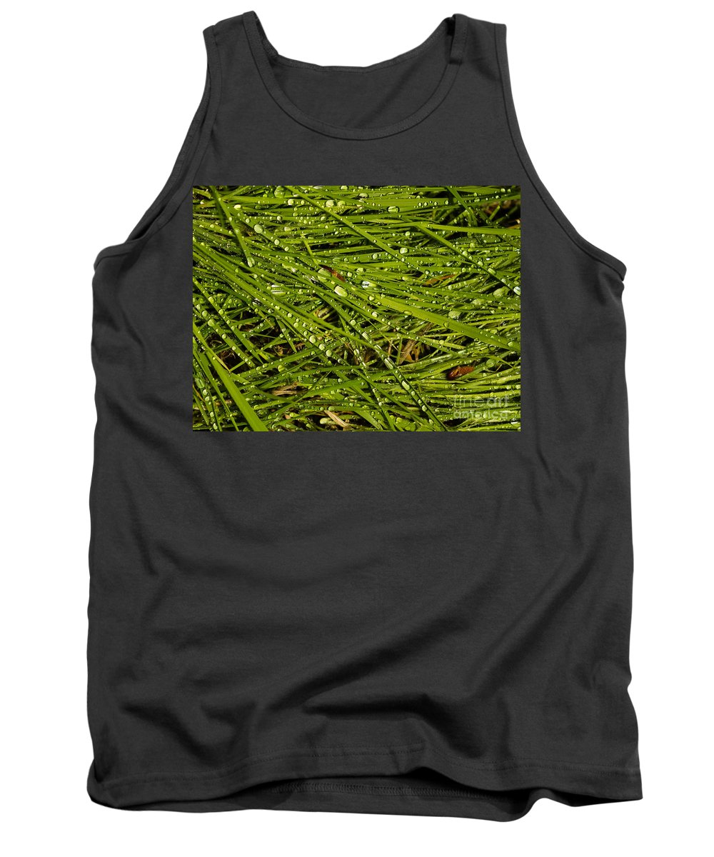 Dew Drops Tank Top featuring the photograph Wet Weeds by Tracy Knauer
