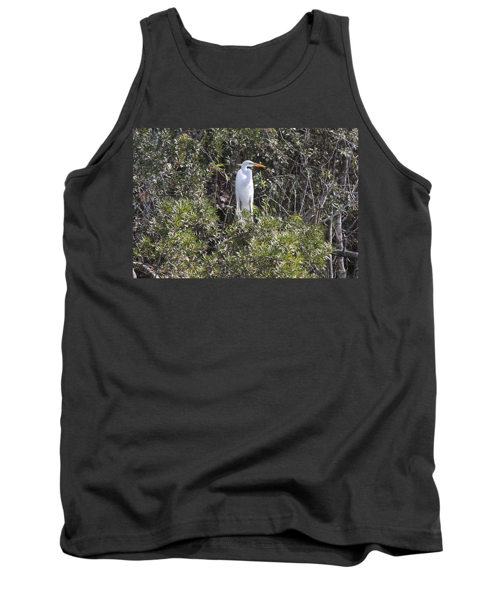 Egret Tank Top featuring the photograph White Egret In The Swamp by Christiane Schulze Art And Photography