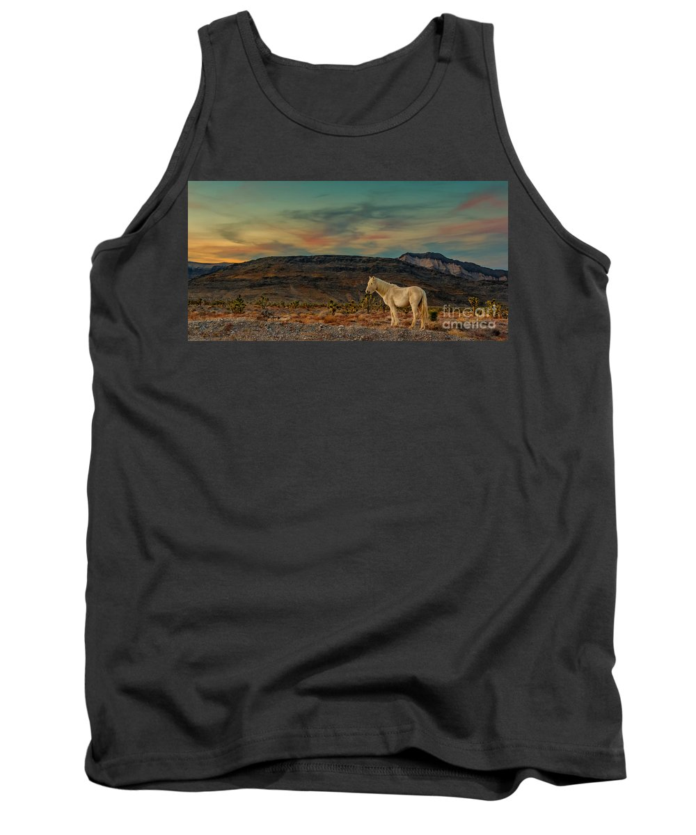 Horse Tank Top featuring the photograph White Horse At Sunset by Glenn Brogan