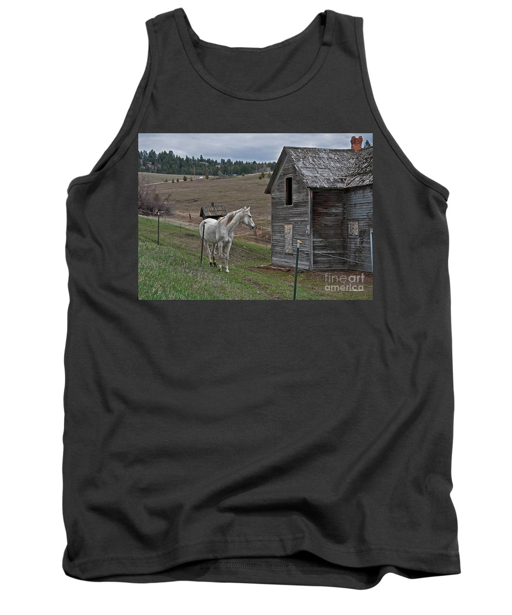 White Horse Tank Top featuring the photograph White Horse Near Old Homestead Art Prints by Valerie Garner