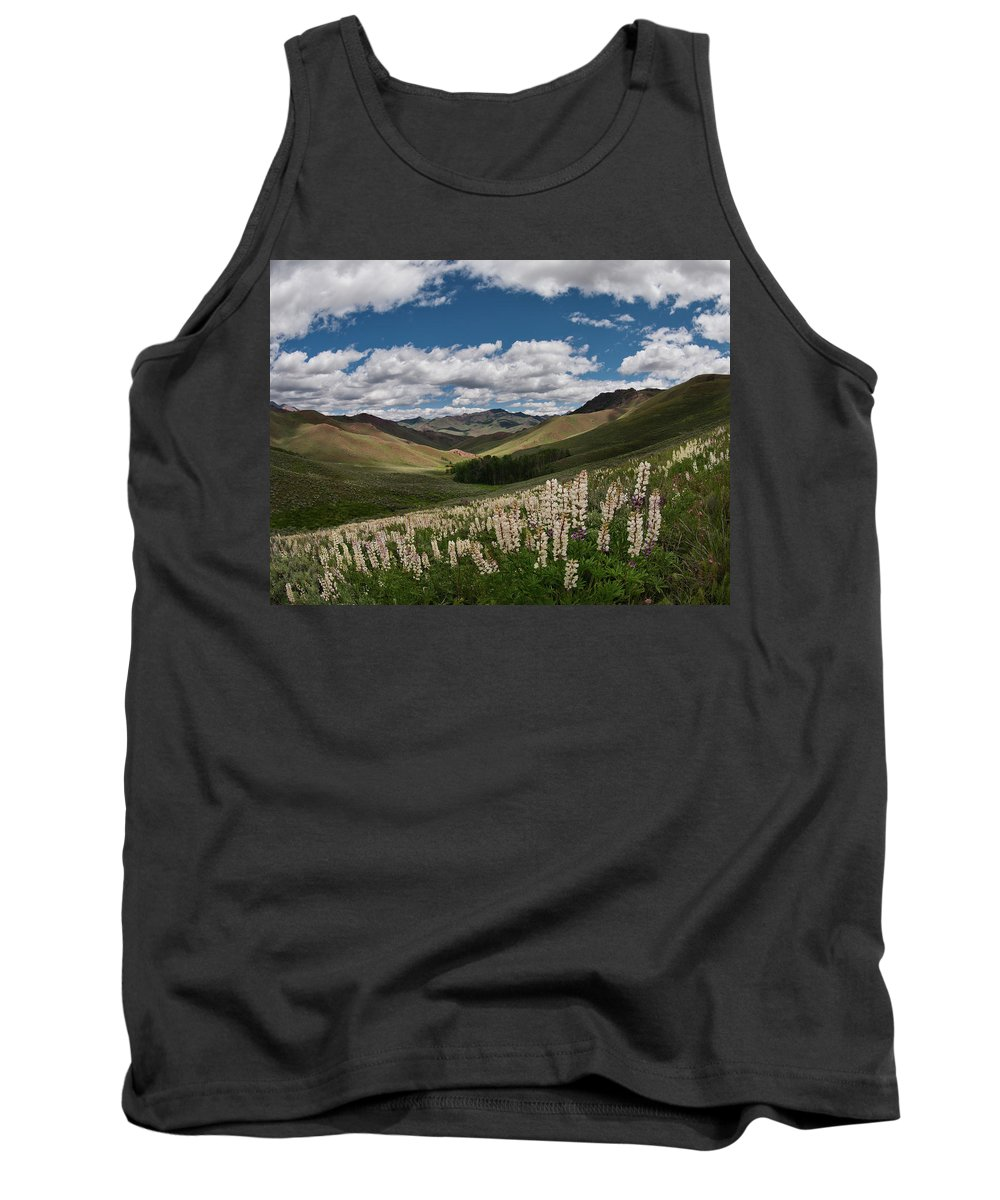 Bright Tank Top featuring the photograph White Knob Mountains Spring by Leland D Howard