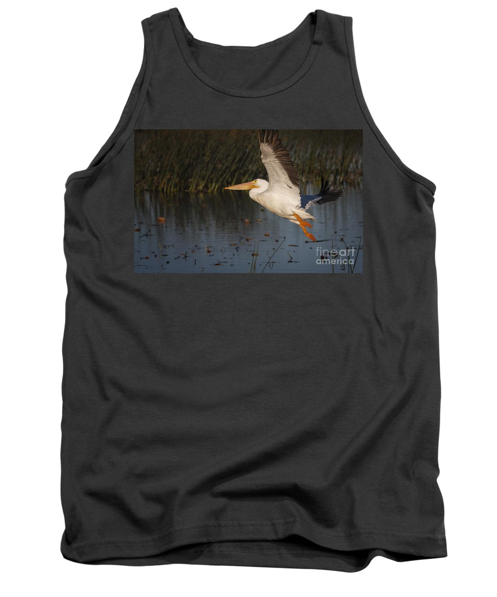 White Pelican Tank Top featuring the photograph White Pelican 198 by Maria Struss