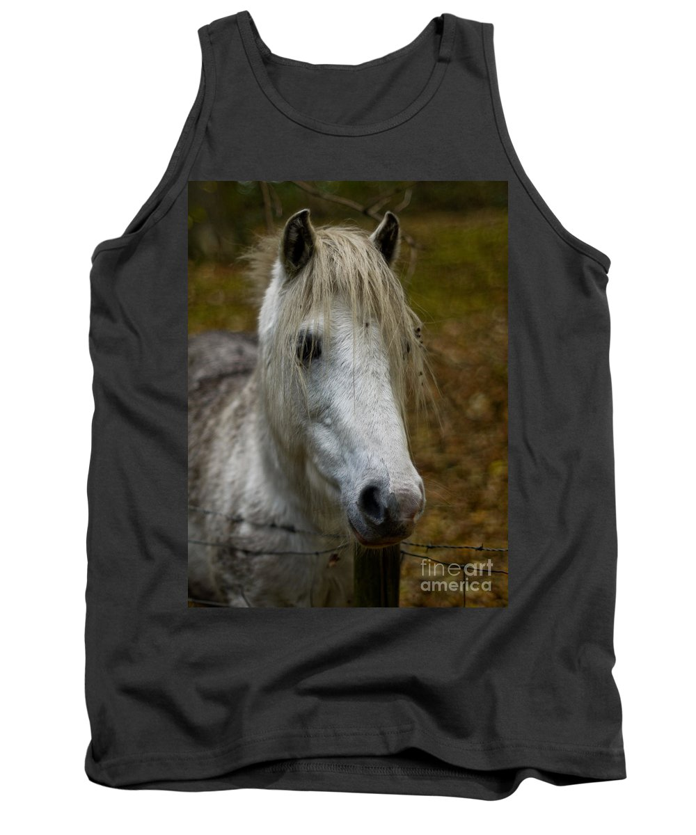 Horse Tank Top featuring the photograph White Pony by Brothers Beerens