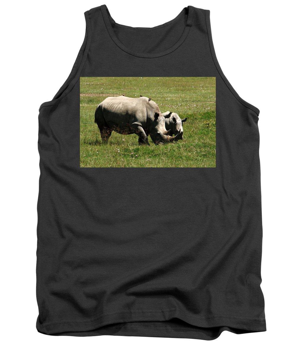 Rhinoceros Tank Top featuring the photograph White Rhinoceros by Aidan Moran