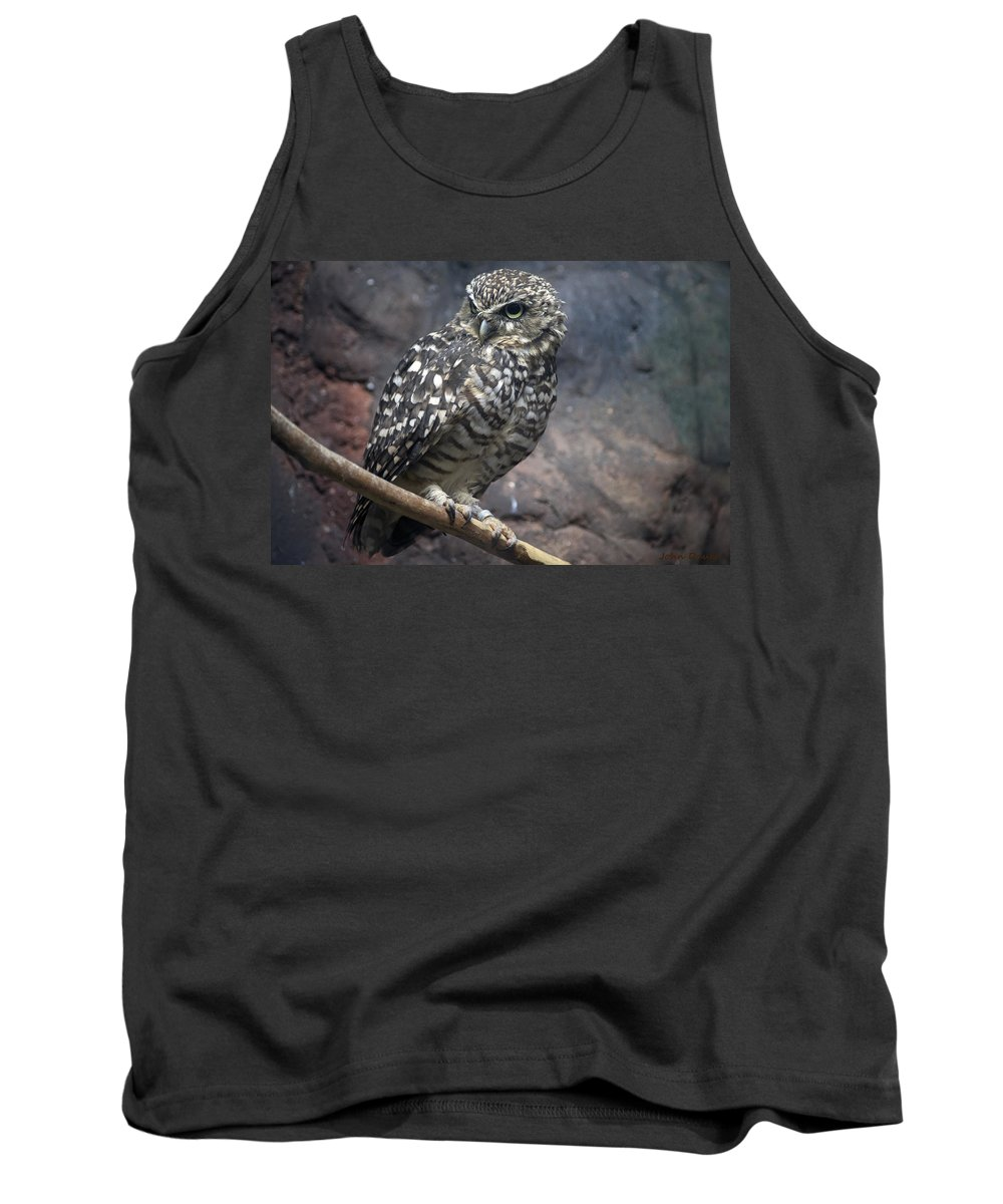 Owl Tank Top featuring the photograph Who Are You? by John Dauer