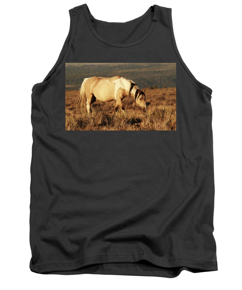 Wild Horses Tank Top featuring the photograph Wild Colors by Steve McKinzie