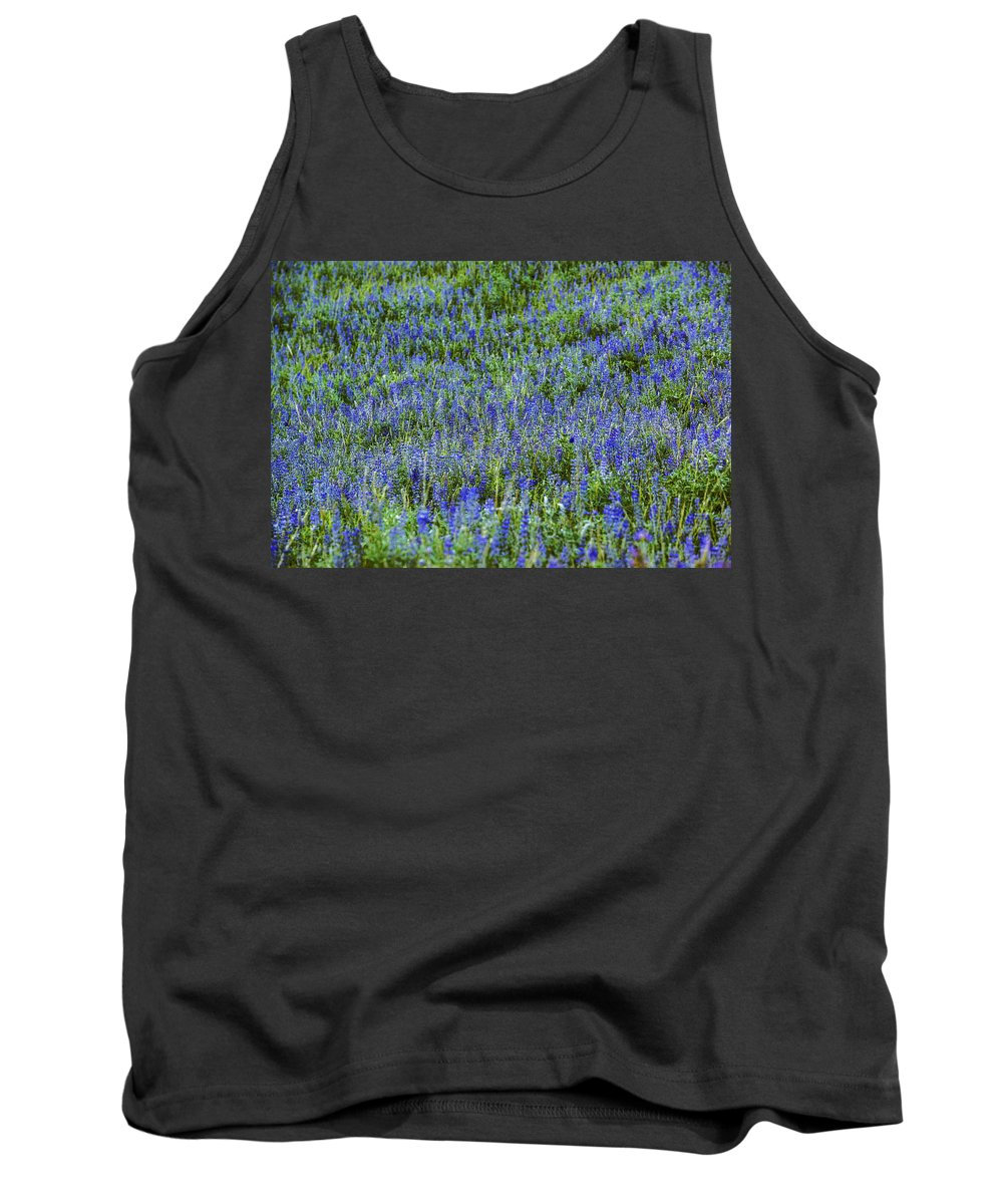 Lupine Tank Top featuring the photograph Wild Flowers Blanket by Vishwanath Bhat
