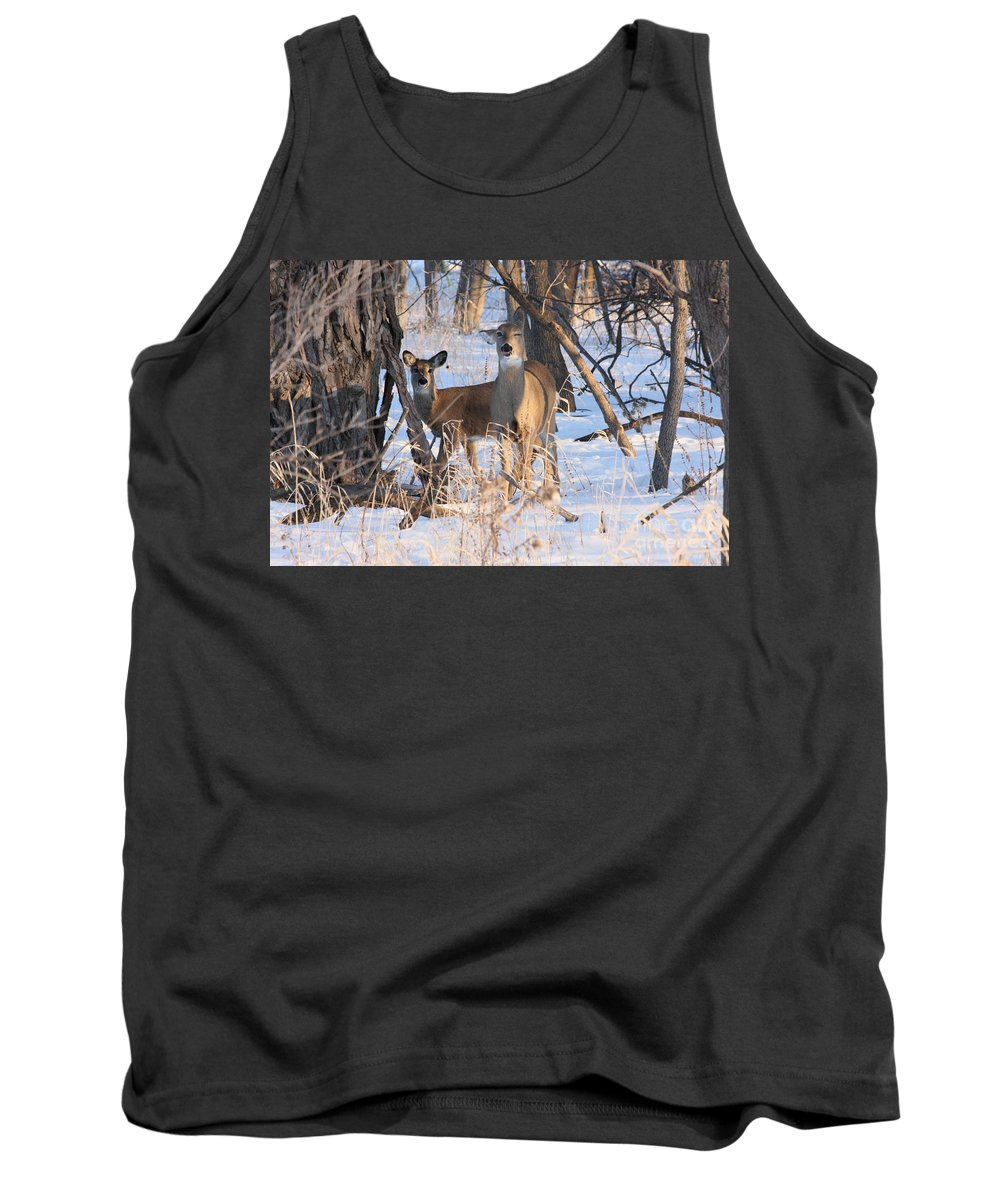 Deer Tank Top featuring the photograph Wink by Lori Tordsen