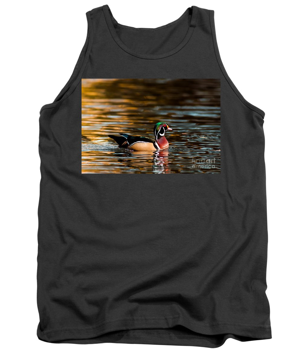 Animal Tank Top featuring the photograph Wood Duck At Morning by Robert Frederick