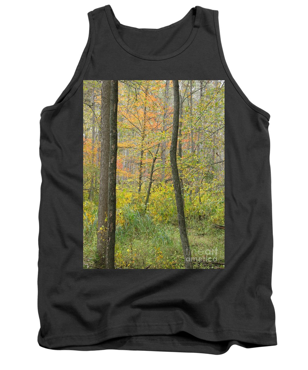 Autumn Tank Top featuring the photograph Woodland Interior by Ann Horn