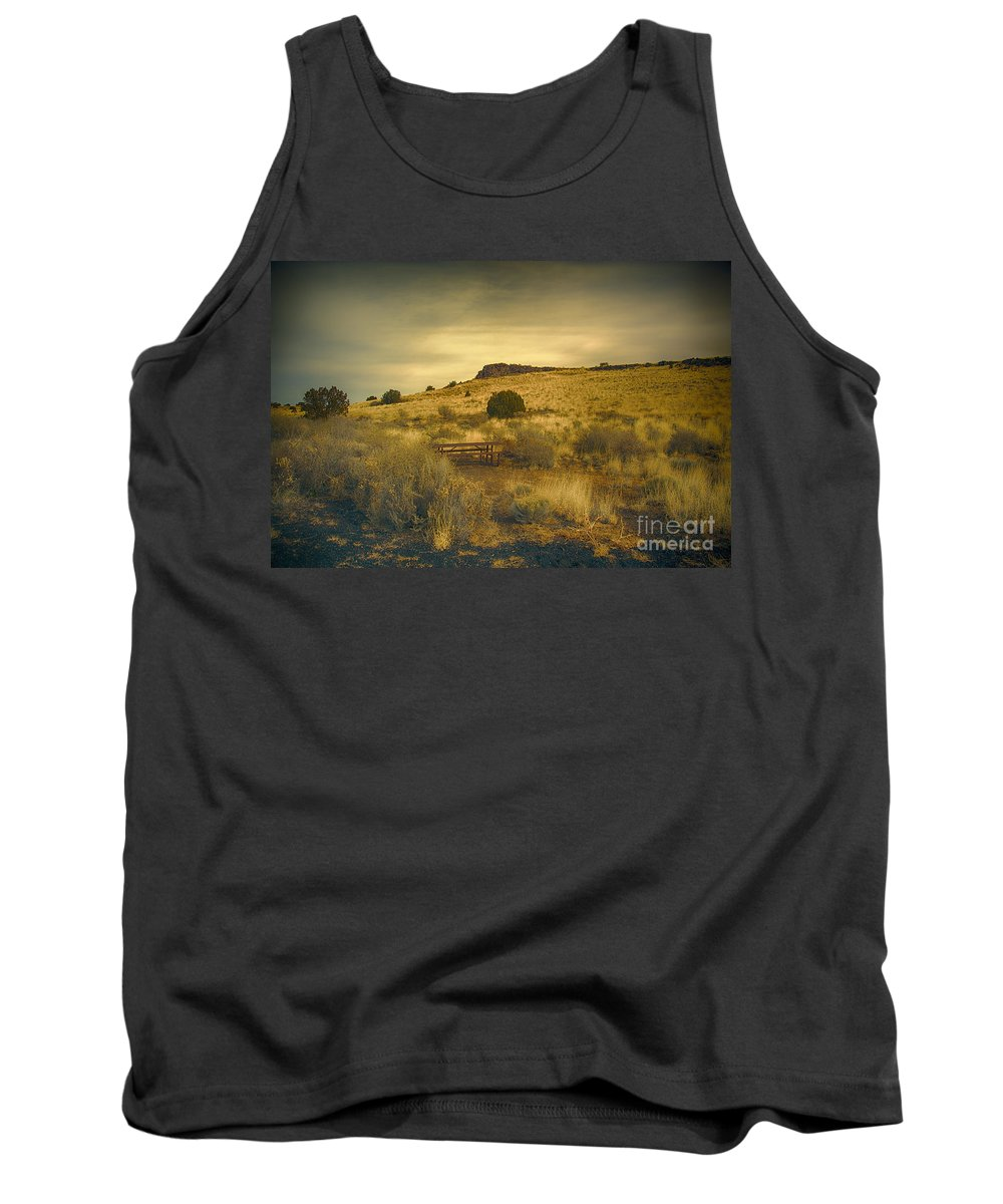 San Francisco Peaks Tank Top featuring the photograph Wupatki National Monument-bench by Douglas Barnard