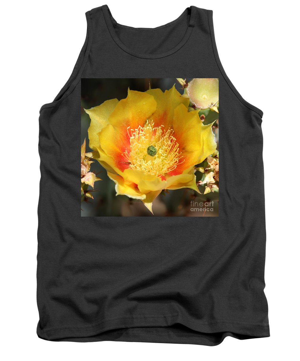 Yellow Flower Tank Top featuring the photograph Yellow Cactus Flower Square by Carol Groenen