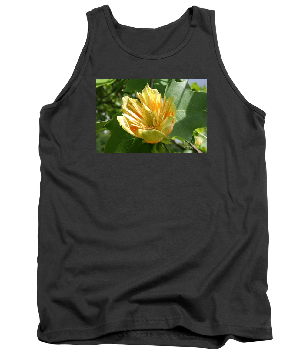 Tulip.tuliptree Tank Top featuring the photograph Yellow Tuliptree Flower by Christiane Schulze Art And Photography