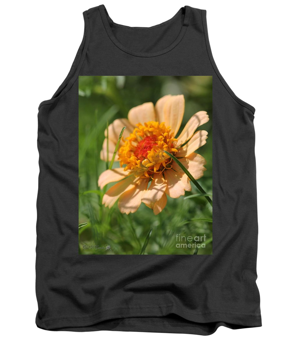 Mccombie Tank Top featuring the photograph Zinnia From The Candy Mix by J McCombie