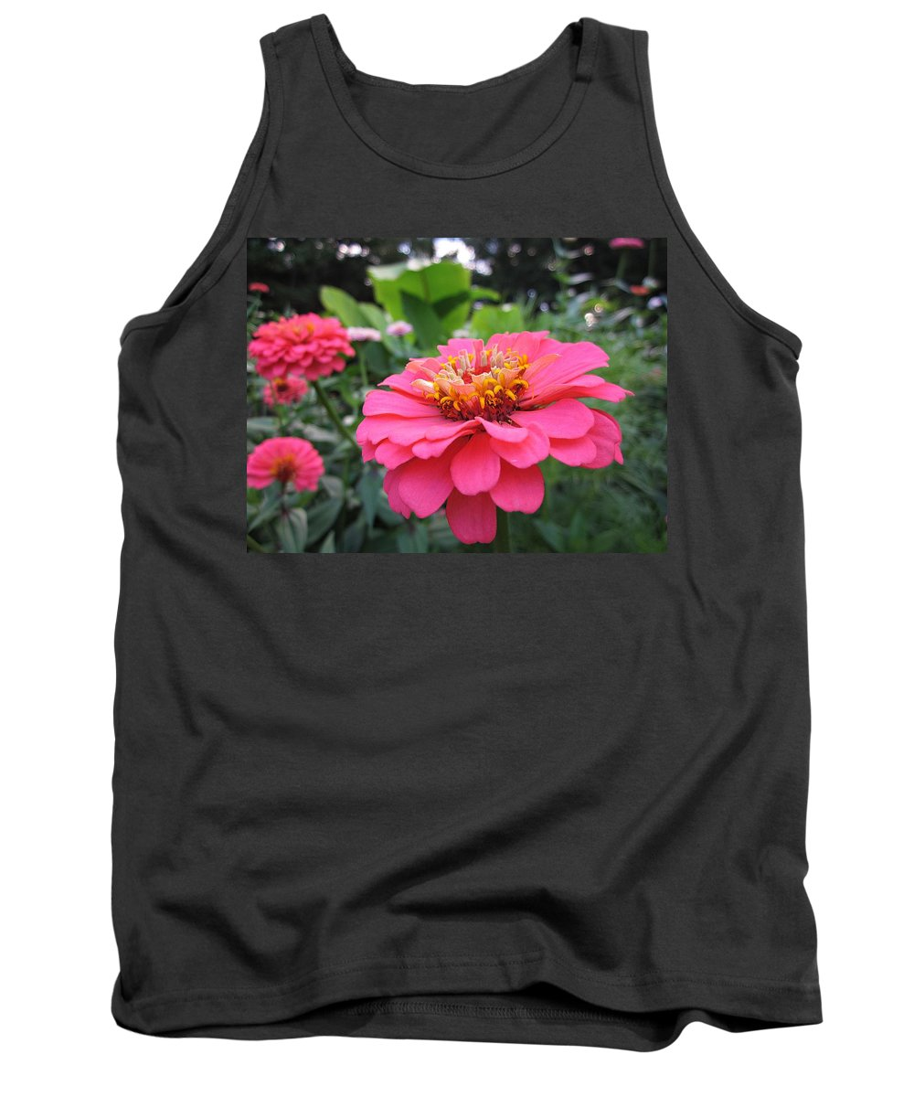 Zinnias Tank Top featuring the photograph Zinnias by MTBobbins Photography