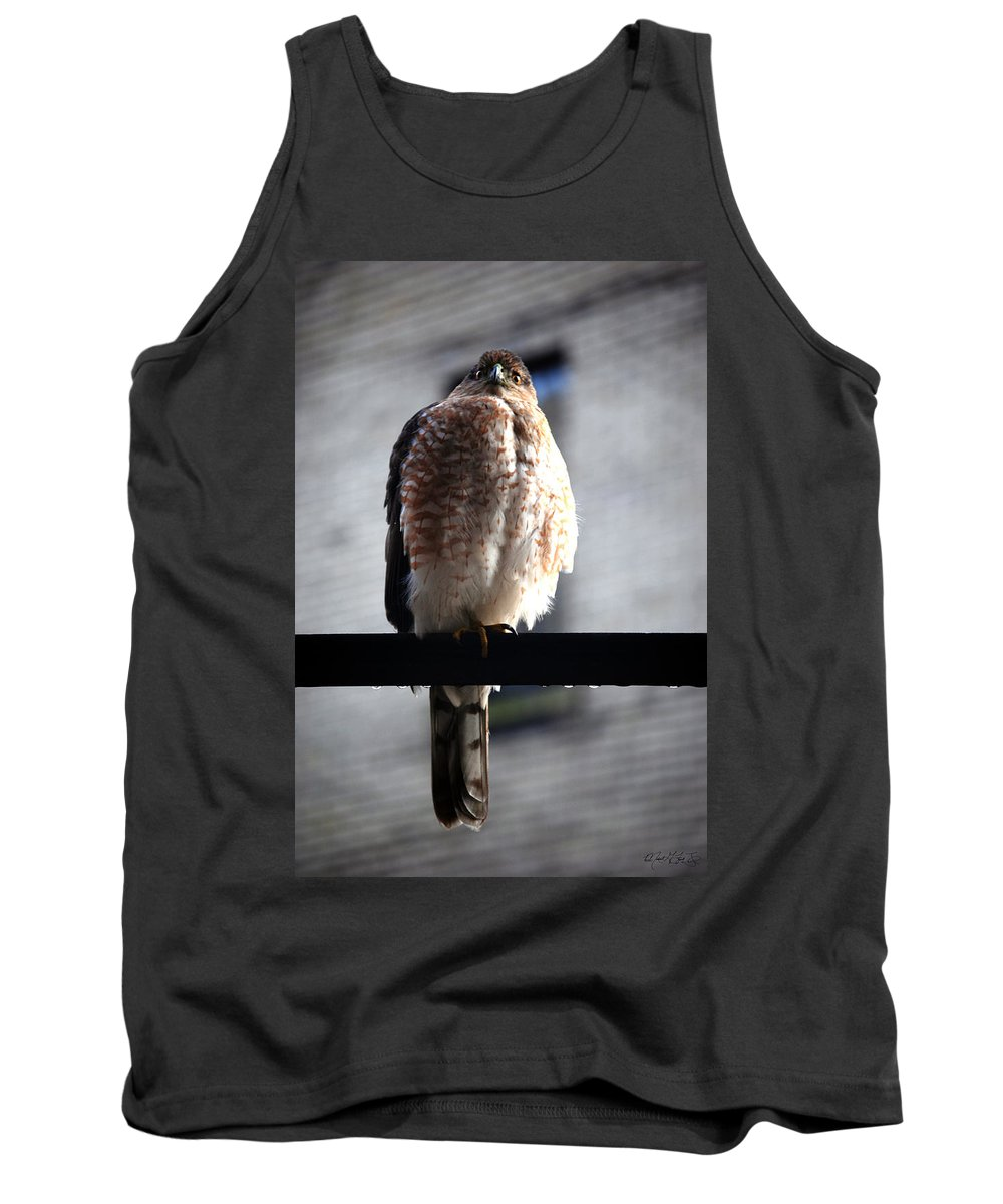 Tank Top featuring the photograph 05 Falcon by Michael Frank Jr
