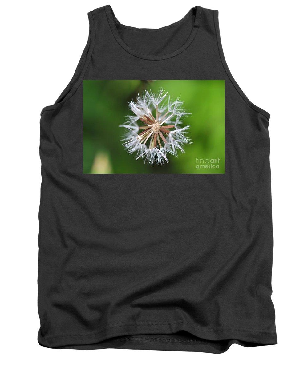 Dandelion Tank Top featuring the photograph Dandelion by Mats Silvan