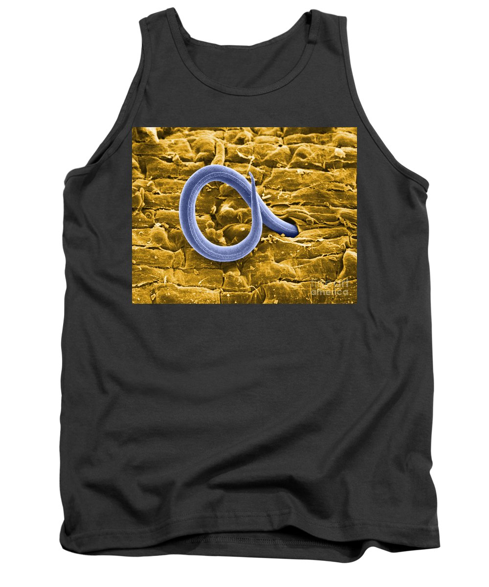 Zoology Tank Top featuring the photograph Root Knot Nematode Sem by Science Source