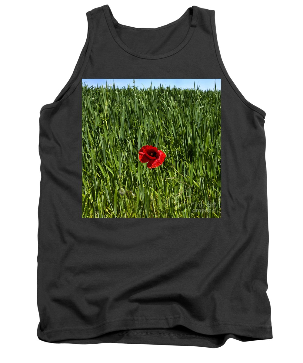 Wheat Tank Top featuring the photograph Single Poppy Flower In A Field Of Wheat by Bernard Jaubert