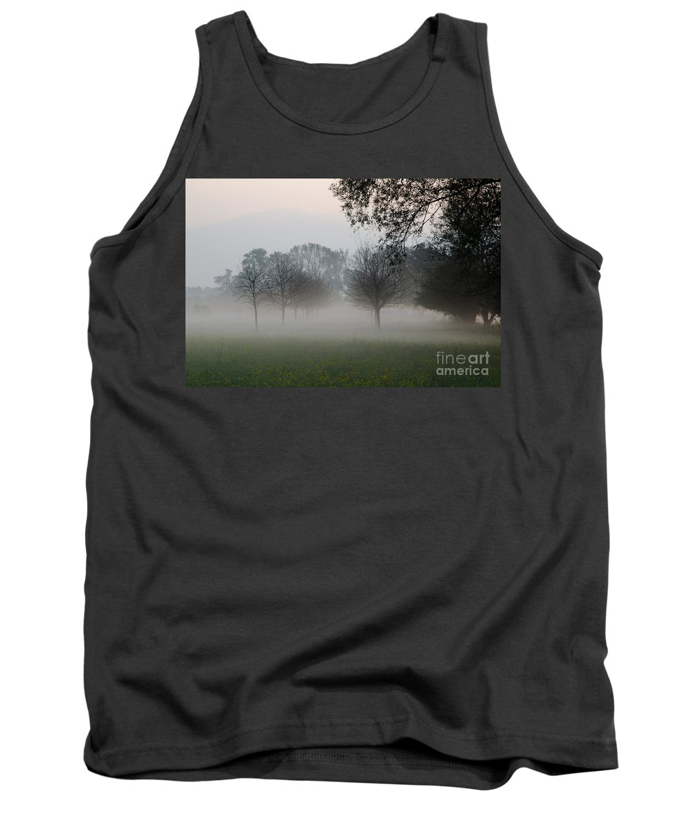 Trees Tank Top featuring the photograph Trees And Fog by Mats Silvan
