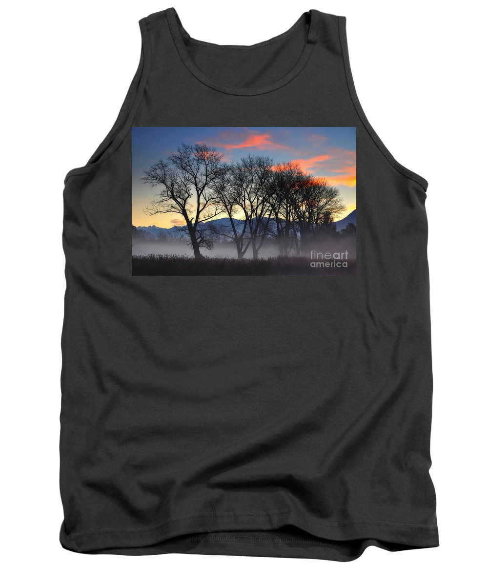 Trees Tank Top featuring the photograph Trees With Fog by Mats Silvan