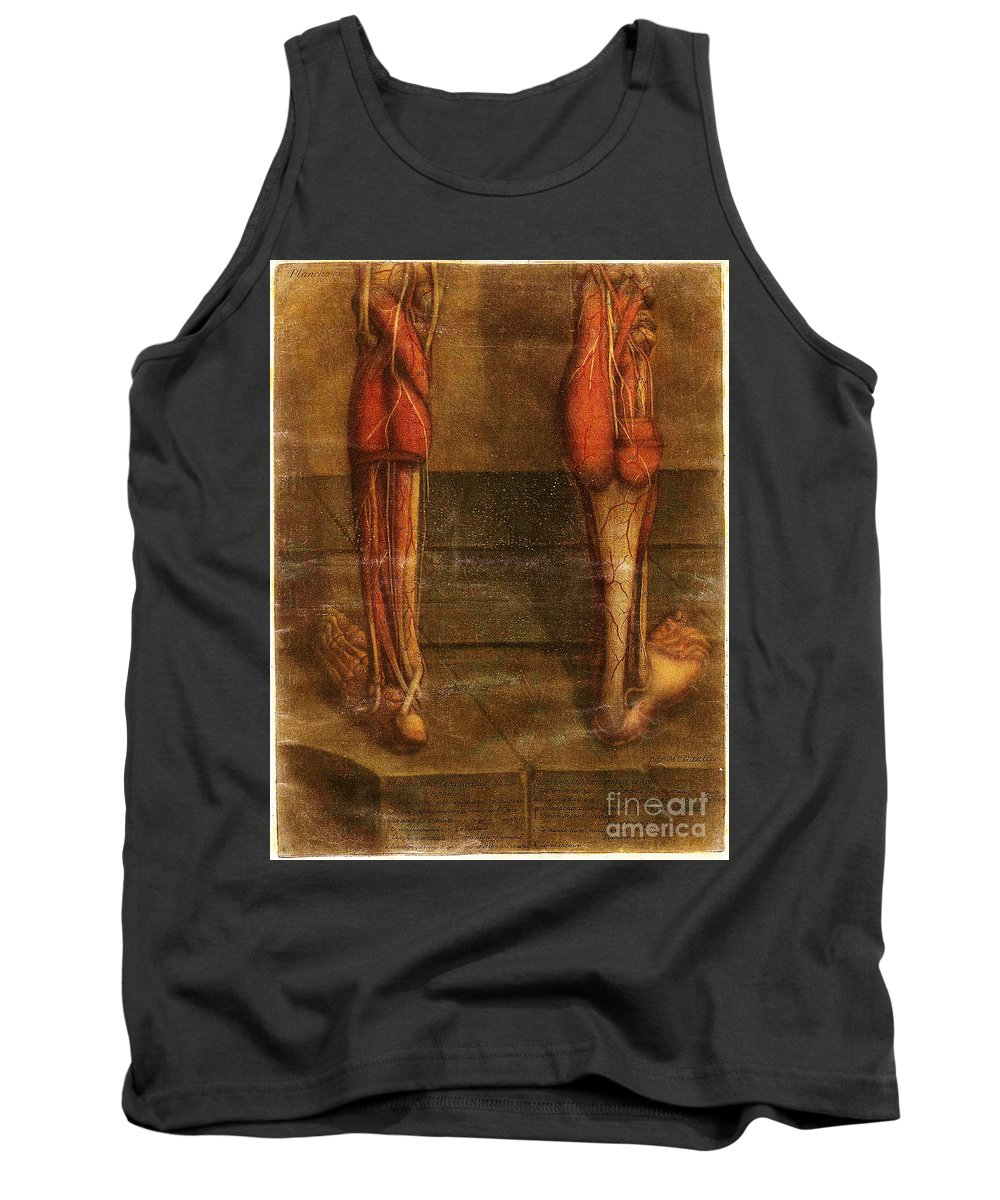 Anatomy Tank Top featuring the photograph Anatomie Generale Des Visceres by Science Source