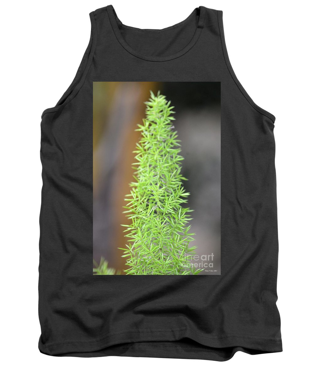 Foxtail Tank Top featuring the photograph A Foxtail Fern Closeup by Maria Urso