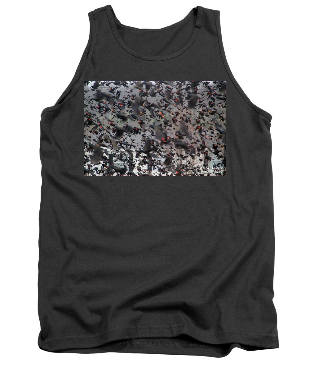 Sooc Tank Top featuring the photograph A Mob Of Red-winged Blackbirds by Ericamaxine Price
