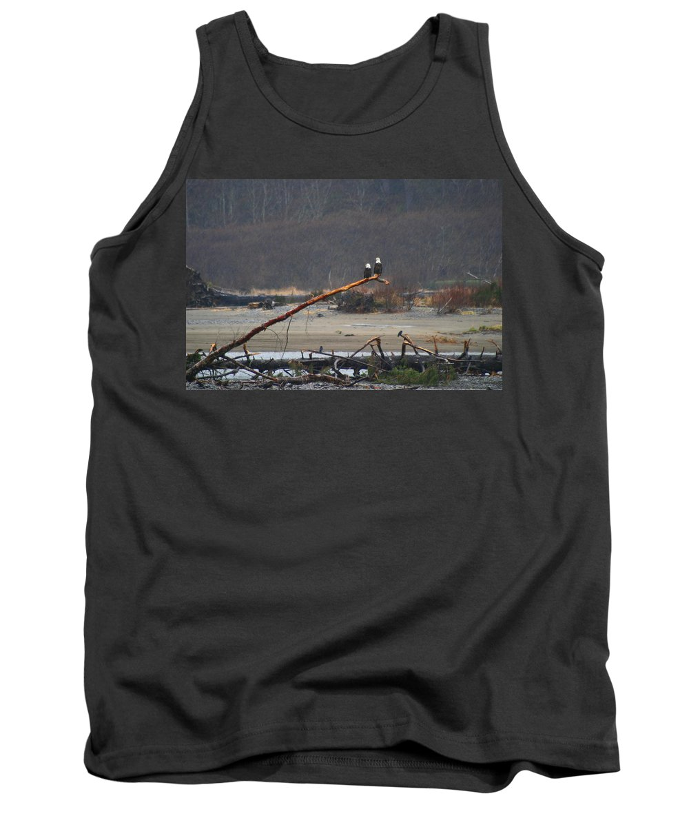 Bald Eagles In The Rain Tank Top featuring the photograph A Pair Of Eagles In The Rain by Kym Backland