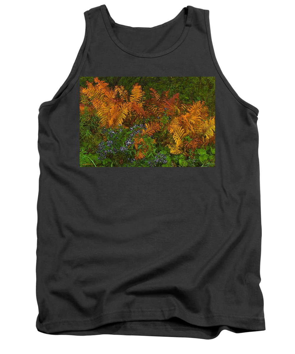 Autumn Tank Top featuring the photograph Asters And Ferns by Ron Jones