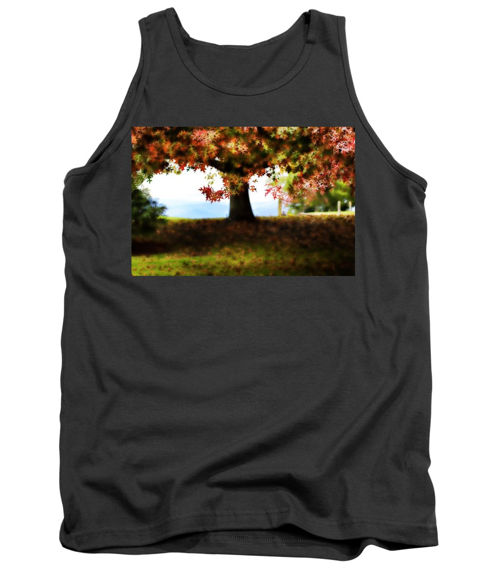 Autumn Tank Top featuring the photograph Autumn Acorn Tree by Douglas Barnard