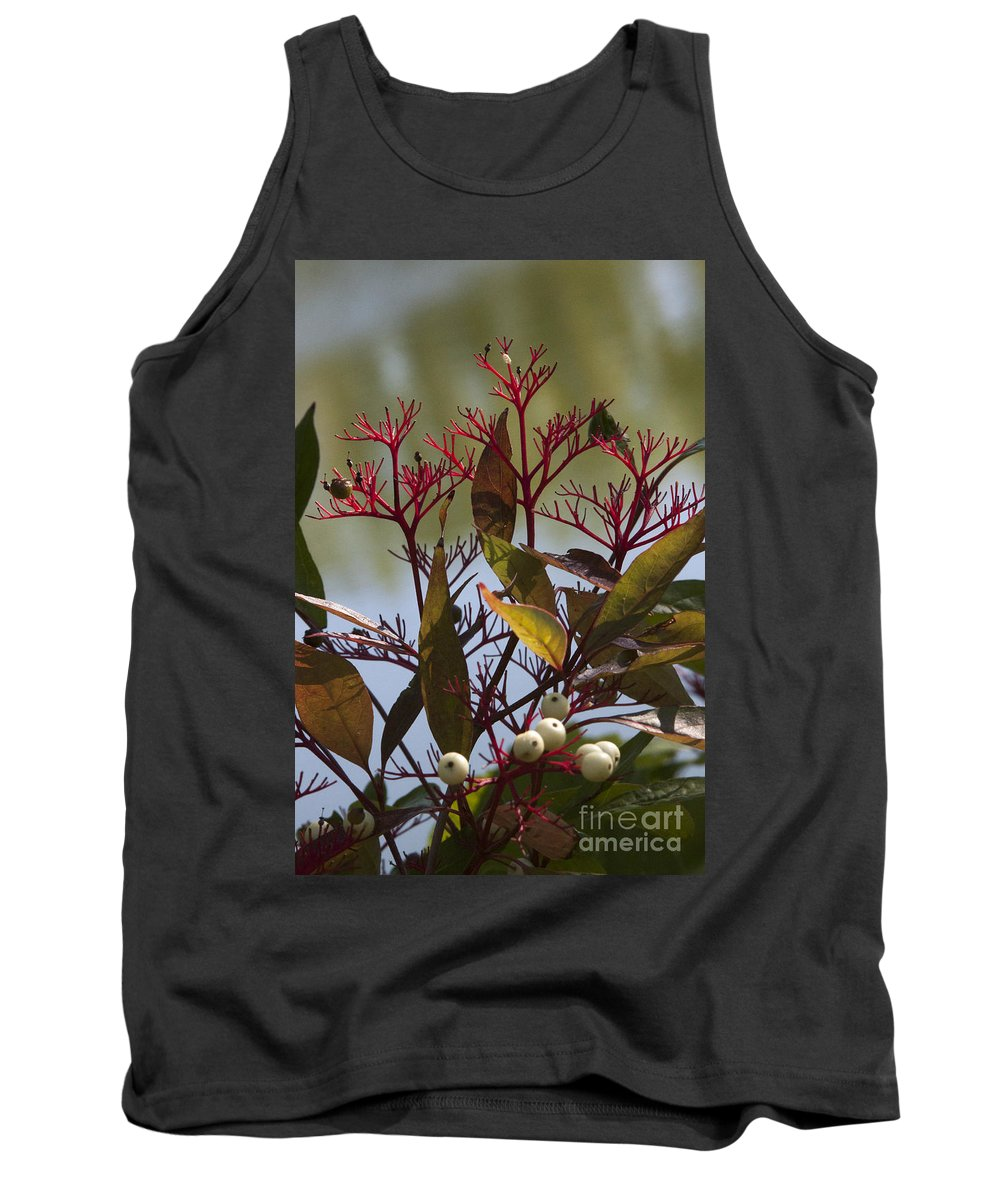 Autumn Tank Top featuring the photograph Autumn Snow Berry Bush by Darleen Stry