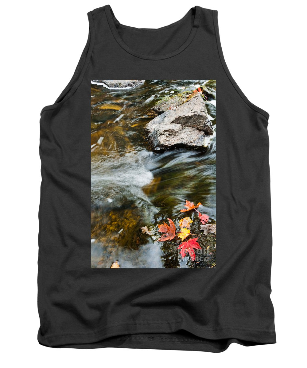 Landscape Tank Top featuring the photograph Autumn Stream by Cheryl Baxter