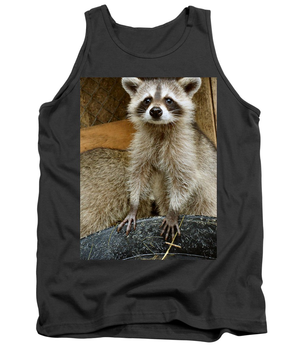 Raccoon Tank Top featuring the photograph Big And Tall by Art Dingo