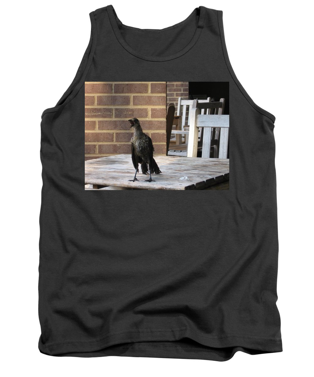 Bird Tank Top featuring the photograph Bird by Amy Hosp